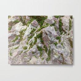 Vibrations, Glacier National Park Metal Print