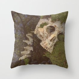 Catacomb Culture - Human Skull in Creek Throw Pillow