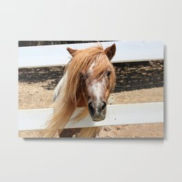 Pretty Pony BEFORE Metal Print