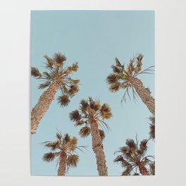 Summer Shade Poster