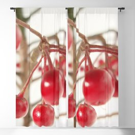 Scarlet Berry Blackout Curtain