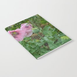 Poppies in rain Notebook