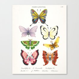 Butterfly Pokémon of the World Canvas Print