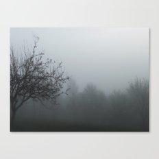myst Canvas Print