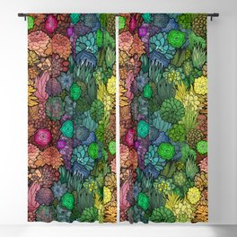 Succulent Rainbow Blackout Curtain