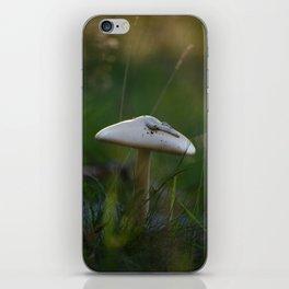 Golden Hour Mushroom iPhone Skin