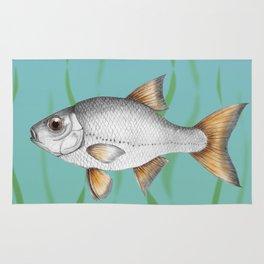 Common roach fish Rug