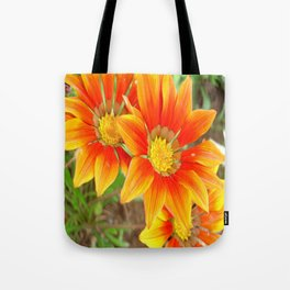 Vibrant Yellow and Vermillion Gazania Rigens Flower Tote Bag