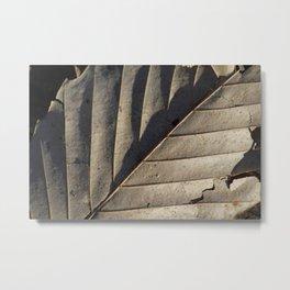 Shadowed Leaf Metal Print