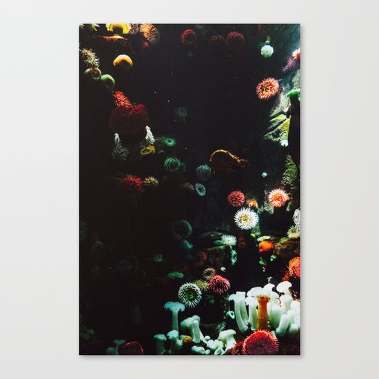UNDERWATER ANEMONE Canvas Print