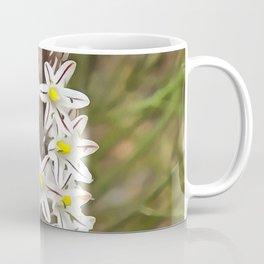 Drimia Maritima Coffee Mug