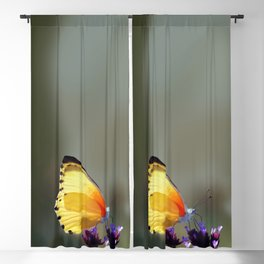 Yellow butterfly Blackout Curtain