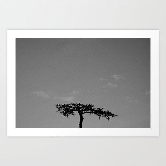 it seems like a bonsai Art Print