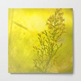 Summer meadow - #society6 #buyart Metal Print