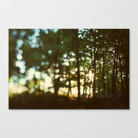 In Secret Canvas Print