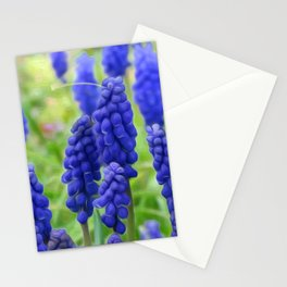 Heralds of Summer Stationery Cards