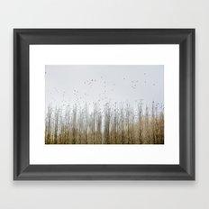 Wild Birds Flying. Foggy Sunrise Framed Art Print