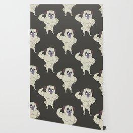 Fit Pug Wallpaper