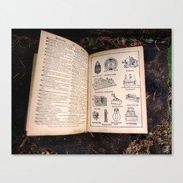 Survivor, old book, dictionary Canvas Print