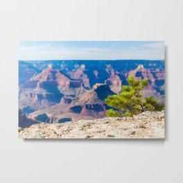 Grand Canyon edge Metal Print