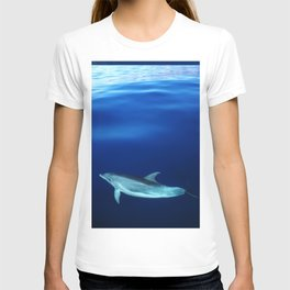 Dolphin and blues T-shirt