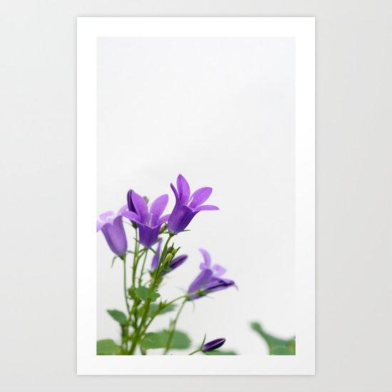 PURPLE FLOWERS - Bellflowers #1 #decor #art #society6 Art Print