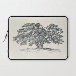 Antique Tree Illustration III Laptop Sleeve