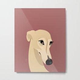 Shy greyhound Metal Print