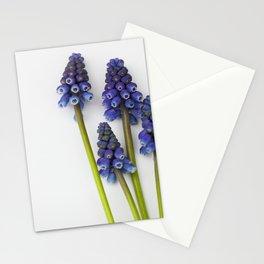 Muscari - Blue Grape - JUSTART © Stationery Cards