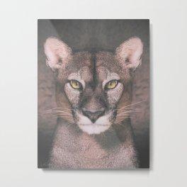 Cougar Metal Print