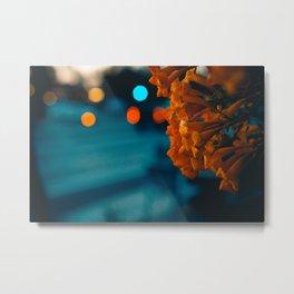 Evening Colors Metal Print