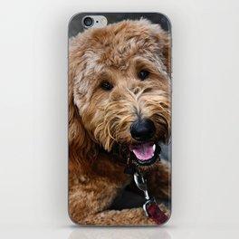 Good Doggo iPhone Skin