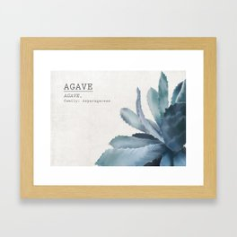 Agave, botanic print - grey Framed Art Print
