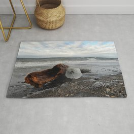 Driftwood And Ice in Spring Rug