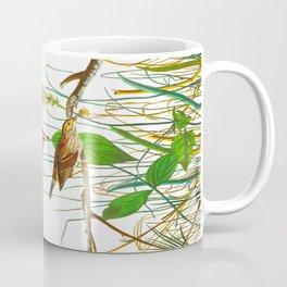 Savannah Finch Bird Coffee Mug
