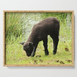 Grazing Black Lamb Serving Tray