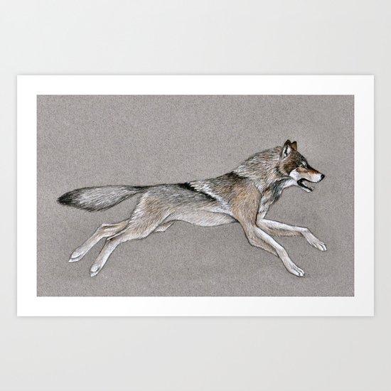 Grey Wolf Running Art Print