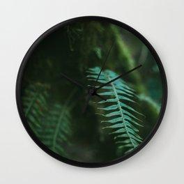 redwood forest fern Wall Clock