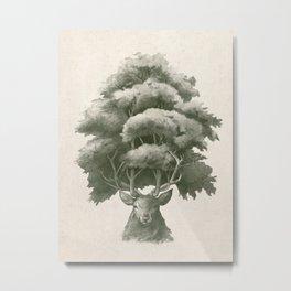 Old Growth  Metal Print