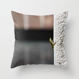 Peek-a-booo Throw Pillow