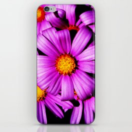 Purple Flowers iPhone Skin