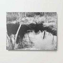 Autumn 5 Metal Print