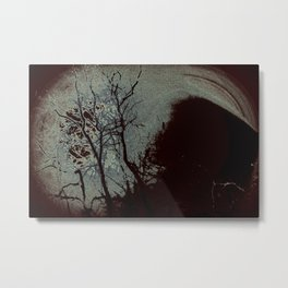 trees in the middle of a great snowstorm Metal Print