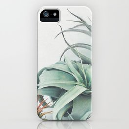 Air Plant Collection iPhone Case