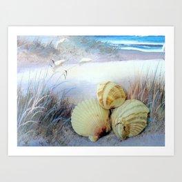 Three Shells Art Print