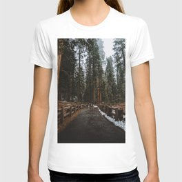 Foggy Trails T-shirt