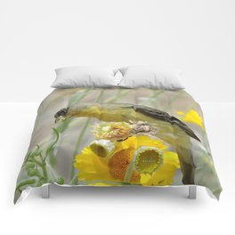Feasting Finch Comforters