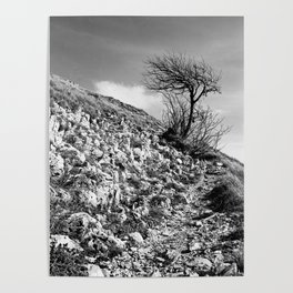 Along the trail, Mount Saint Vicino, Italy Poster