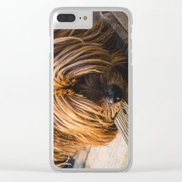 Yorkshire Terrier Biting Wood Clear iPhone Case