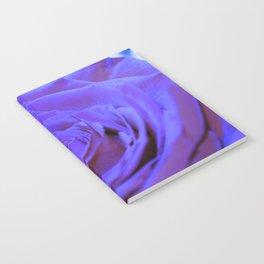 Purple Blue Rose Notebook